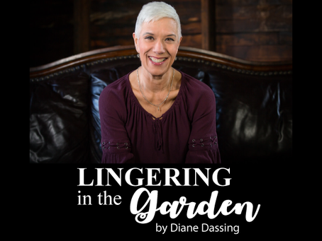 Welcome to                            Lingering in the Garden