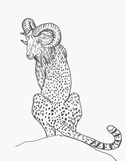 Cheetah.Ram_PoseDr