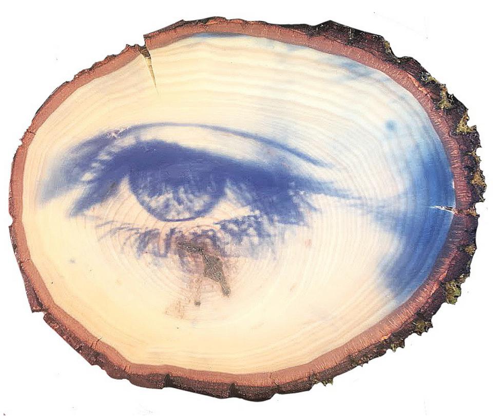 Eye Wooden Print (2019)