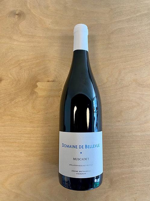 Muscadet Sèvre et Maine - Domaine de Bellevue - 2020