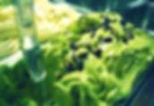 Esempio del pistacchio dal colore innaturale verde acido
