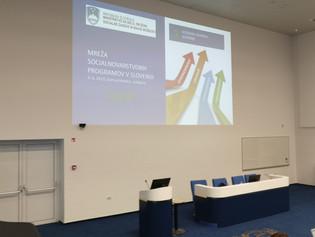 Izveden seminar Mreža socialnovarstvenih programov