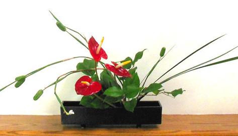 Give the Gift of Ikebana