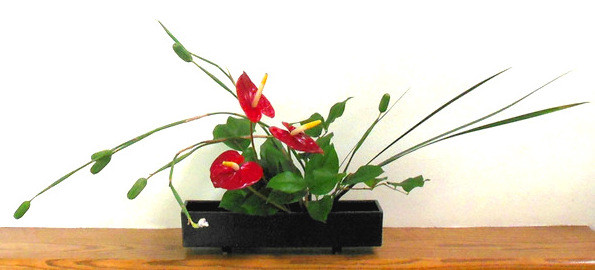Japanese Ikebana with Anthurium and Fortnight Lily.