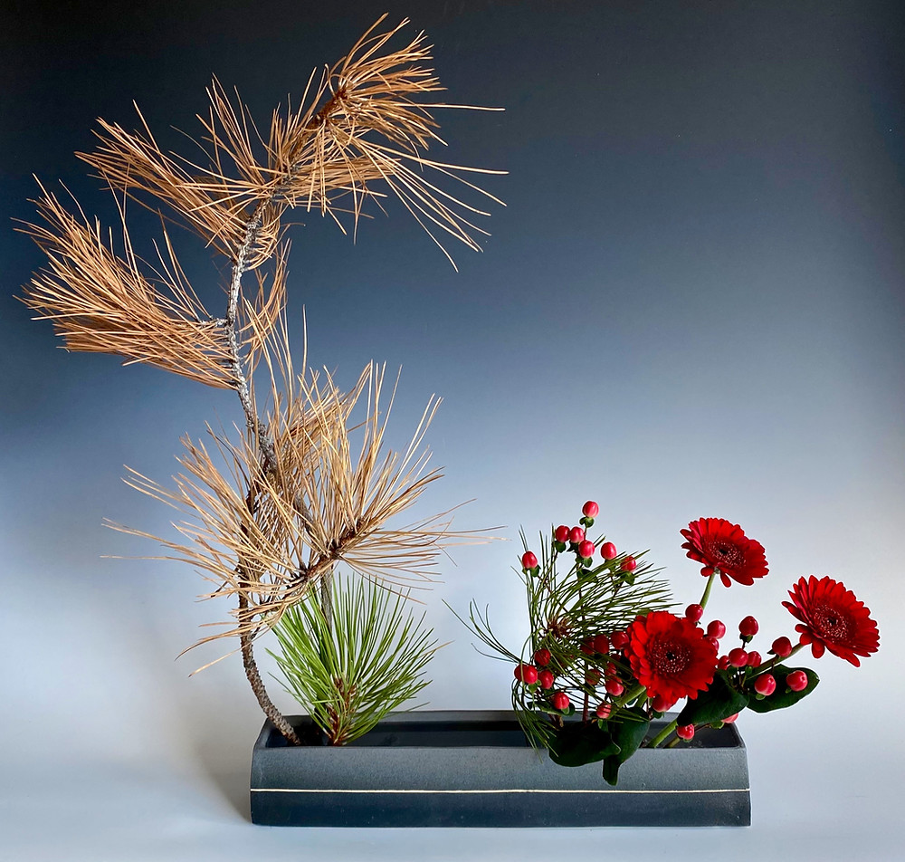 Japanese ikebana with pine, gerber daisy and St. John's wort.
