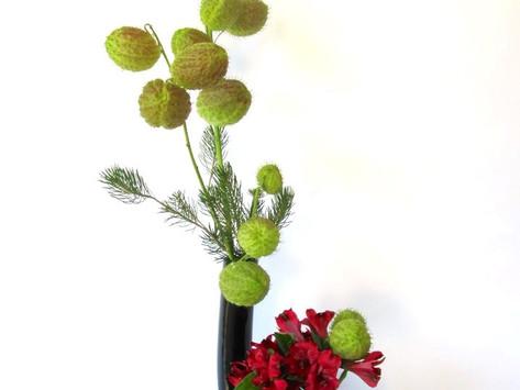 Ikebana Holiday Arrangements