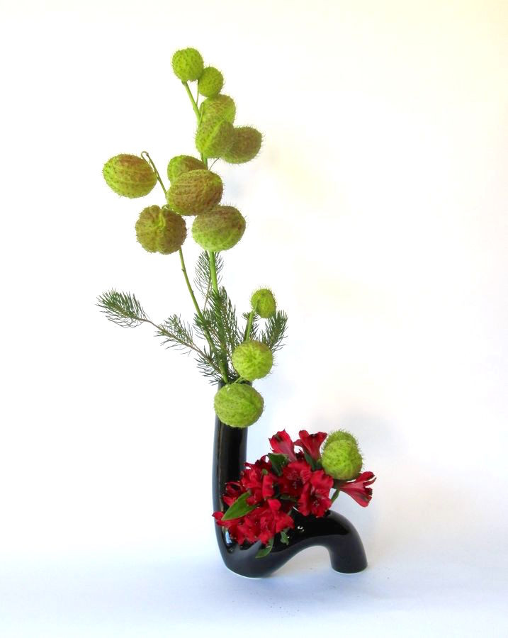Japanese ikebana with pine, balloon plant and alstroemeria.