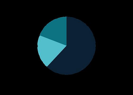 Revenue Graph.png