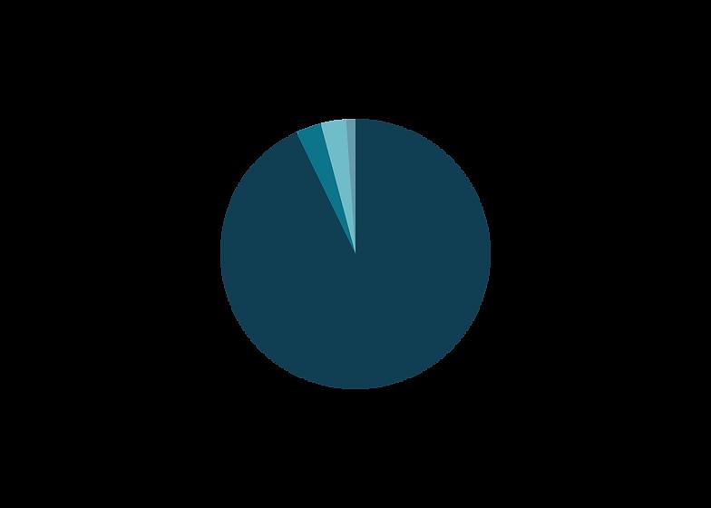 Revenue graph 2020.png
