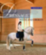 VA Jason, andalusian stallion, andalusian stallion at stud, VA Jason, andalusian stallion jason, andalusian stallion j, dressage coach, dressage instructor, dressage lessons, western dressage, western dressage lessons, western dressage instructors, western dressage coach, western dressage instructor, hunter jumper coach, hunter jumper lessons, hunter jumper instructor, riding lessons, riding lessons langley, riding lessons, horseback riding, horseback riding lessons, riding lessons langley, horseback riding lessons, horseback riding lessons, riding lessons, riding lessons, riding lessons, riding lessons, riding lessons, riding lessons, riding lessons, riding lessons, riding lessons, riding lessons langley, riding lessons langley, riding lessons langley, riding lessons langley, riding lessons langley, riding lessons langely, riding lessons langley, horseback riding lessons, horseback riding lessons, horseback riding lessons, riding lessons langley, riding lessons langley, riding lessons