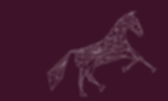 horse trainer, horse training, horse trainer aldergrove, horse trainer langley, horse trainer abbotsford, horse training langley, horse training abbotsford, horse training aldergrove, riding lessons langley, riding lessons aldergrove, riding lessons abbotsford, horseback riding lessons langley, horseback riding lessons abbotsford, horseback riding lessons aldergrove, horseback riding langley, horseback riding aldergrove, horseback riding abbotsford, andalusian, andalusian stallion, andalusian stallion lower mainland, andalusian stallion b.c, VA Jason, VA Jason Andalusian Stallion, learning to ride, learning to ride horses, learning to ride horses in langley, learning to ride horses in abbotsford, learning to ride horses in aldergrove, alliance training, alliance training and stud, alliance training & stud, alliance stud, riding lessons lower mainland, horseback riding lessons lower mainland, horse training lower mainland, horse trainer lower main, Robyn Marsen, Robyn Elizabeth Marsen,
