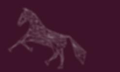 horse training langley, robyn marsen, robyn elizabeth marsen, horse training abbotsford, horse training aldergrove, horse trainer langley, horse trainer abbotsford, horse trainer aldergrove, riding lessons langley, riding lessons abbotsford, riding lessons aldergrove, horseback riding lessons langley, horseback riding lessons abbotsford, horseback riding lessons aldergrove, horse trainer, horse training, andalusian, andalusian stallion at stud, andalusian stallion b.c, andalusian stallion lower mainland, andalusian breeding, VA Jason, VA Jason Andalusian Stallion, VA Jason Andalusian, alliance training, alliance training and stud, alliance training & stud, alliance stud, riding lessons lower mainland, horseback riding lessons lower mainland, horse training lower mainland, horse trainer lower mainland,