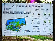 行徳鳥獣保護区
