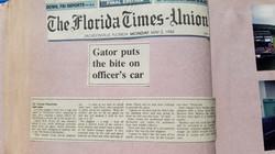 Gator Bites Police Car