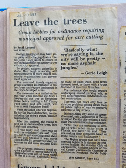 Leave the Trees