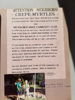 Crepe Myrtles Project