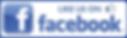 Nashville Websites Design Facebook logo