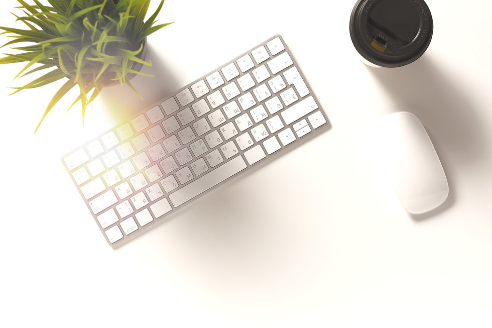 Keyboard mouse and plant on a desk