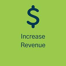 Revenue Graphic.png