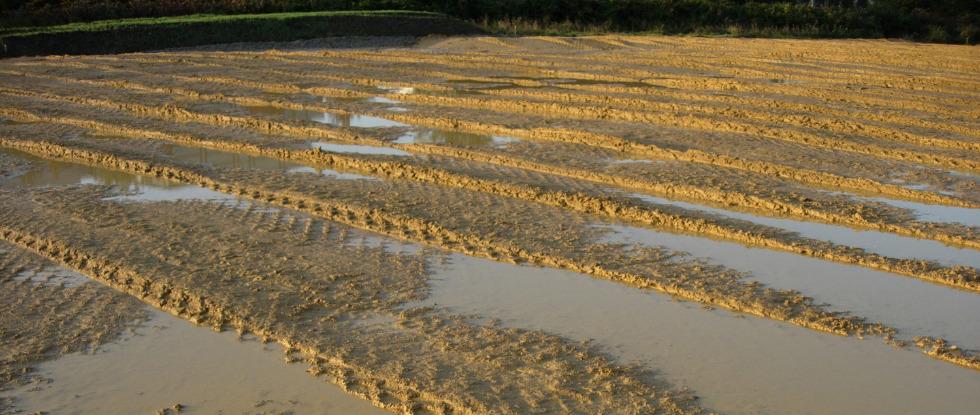 Niederschlagswasserbewirtschaftung