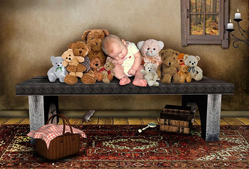 Fantasy & Fairytale Portraits - 'Teddy Shelf'