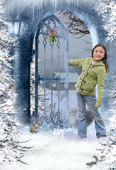 Fantasy & Fairytale Portraits - 'Winter Snow'