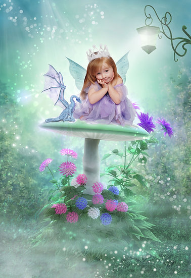 Fantasy & Fairytale Portraits - 'Dragons And Fairies'