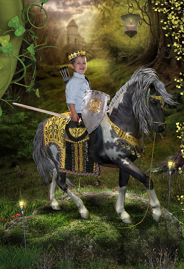 Fantasy & Fairytale Portraits - 'Brave Quest'