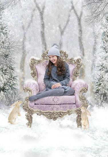 Fantasy & Fairytale Portraits - 'Winter Throne'