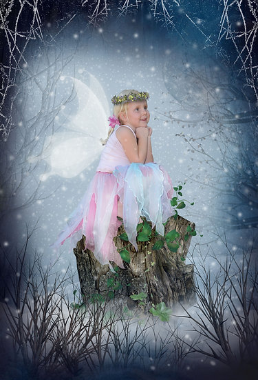 Fantasy & Fairytale Portraits - 'A Winter Tale'