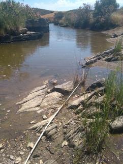 Intermittent river (Portugal). Photo: Luciana Barbosa