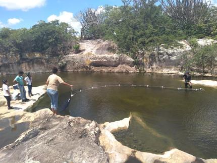 Rock Pools (Brazil). Photo: Luciana Barbosa