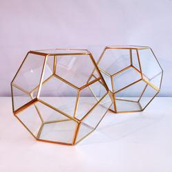 Gold Terrarium 06