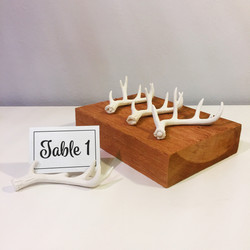 Ivory Antler Table Numbers