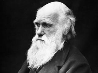 Adoro gli esperimenti folli, li faccio in continuazione. Charles Robert Darwin