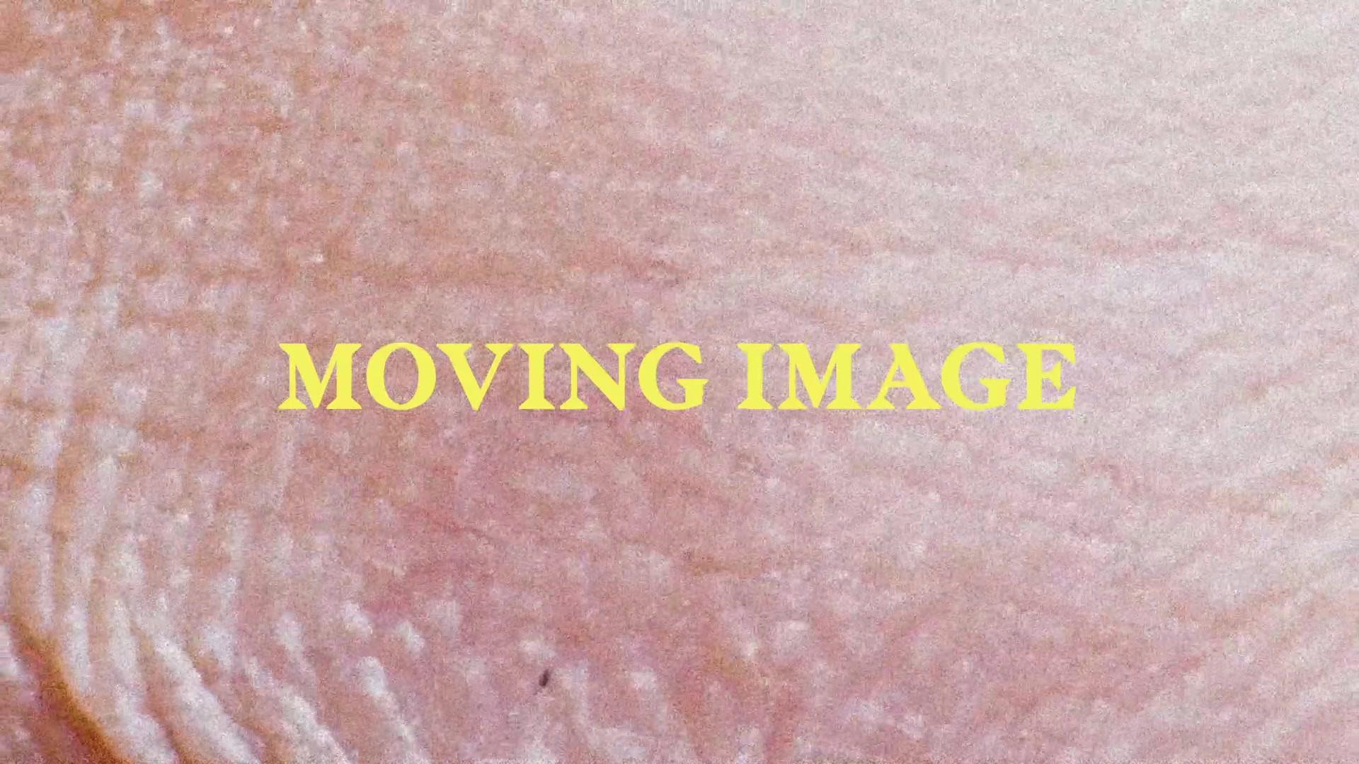 MOVING IMAGE HEADER.mp4