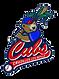 CUBS Baseball.png