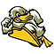 Ducks Baseball.png