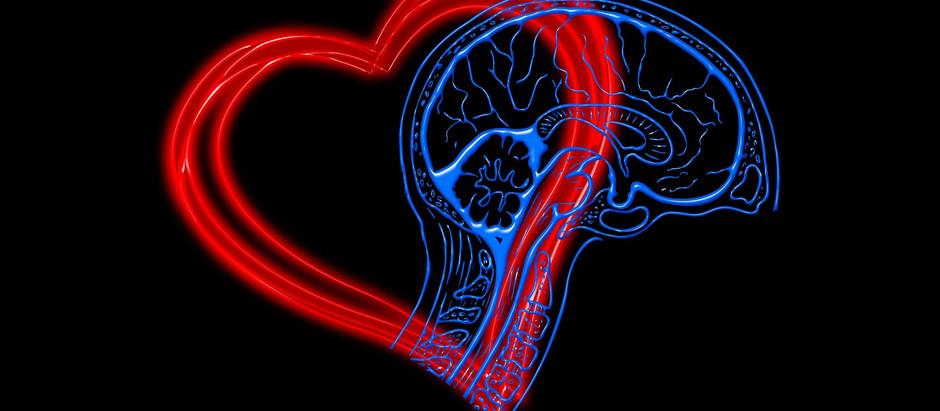 A importância de desenvolver relações mais empáticas e a inteligência emocional