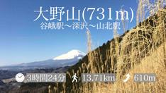 【登山レポ(3)】大野山