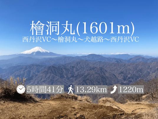 【登山レポ(4)】檜洞丸(犬越路下山)