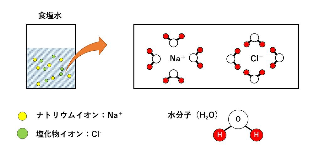 イオンとしての水への溶解