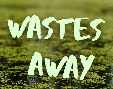 Wastes_NewCoverLargerName.jpg