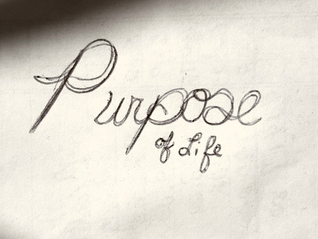 What's The Purpose of Life?