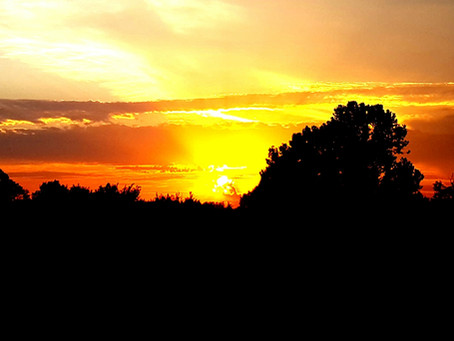 The Bright Sunrise