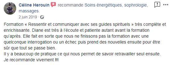 Avis_Céline.PNG