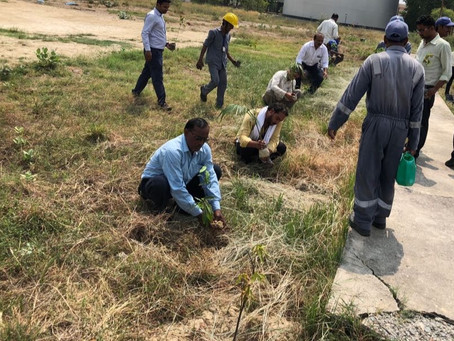 CALL FOR VOLUNTEERS PLANTATION DRIVE