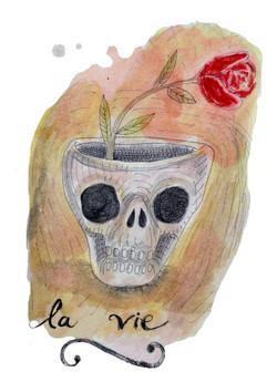 Crâne et vie