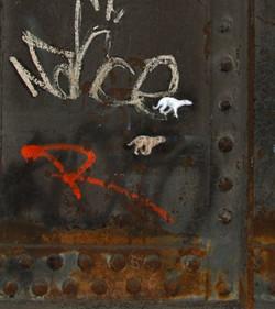 Course de chiens sur panneaux