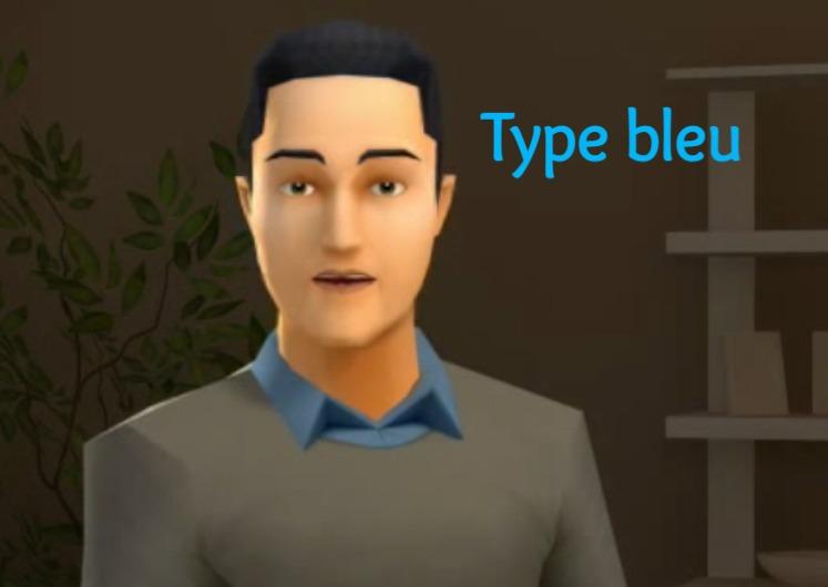 type bleu comcolors
